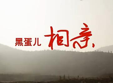 林州微电影《黑蛋儿相亲》全网首播 (8193播放)
