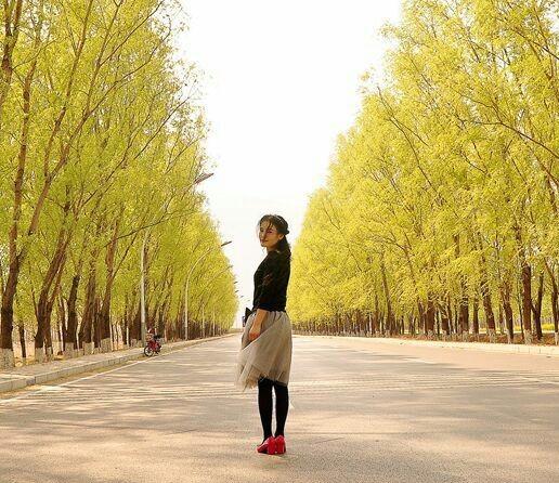 【林州摄影师李国亮】柳影