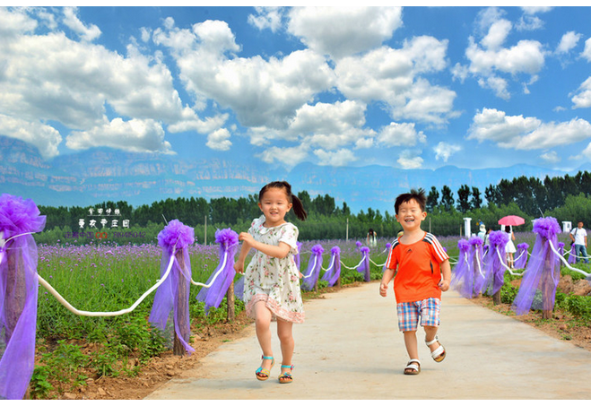 【林州摄影师走遍中国】紫色情缘