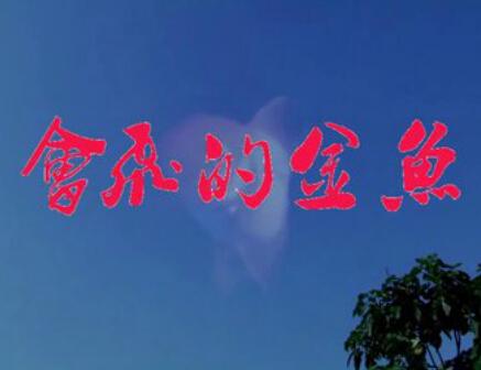林州方言微电影《会飞的金鱼》 (4253播放)