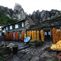 林州:太行丰收农家
