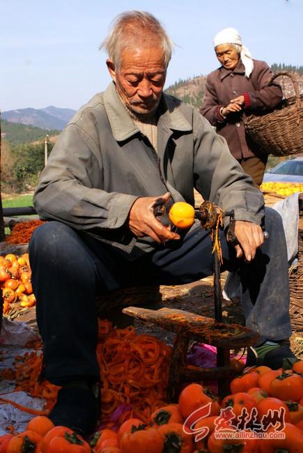 太行秋季最为壮观的景色-晒柿饼 - 白开水 - 林州白开水