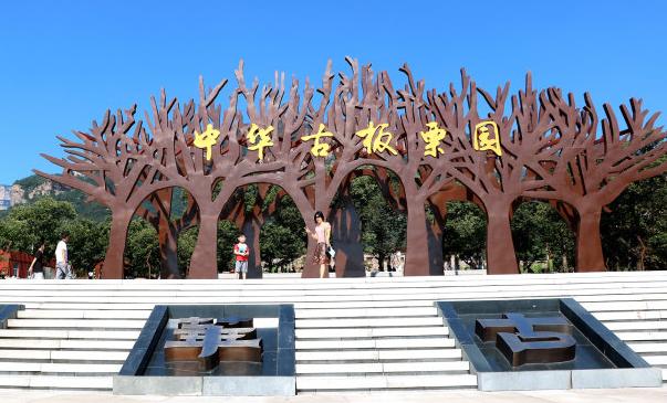 瞰——中华古板栗园
